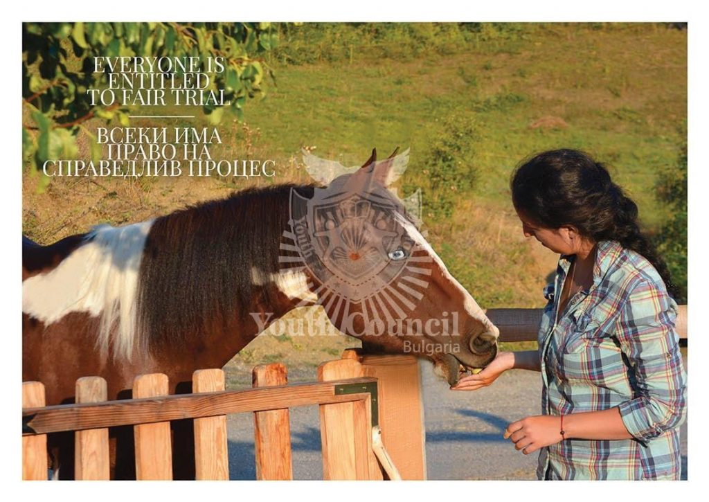 """Photo exhibition """"American horses- the ones that carry lasting values"""""""